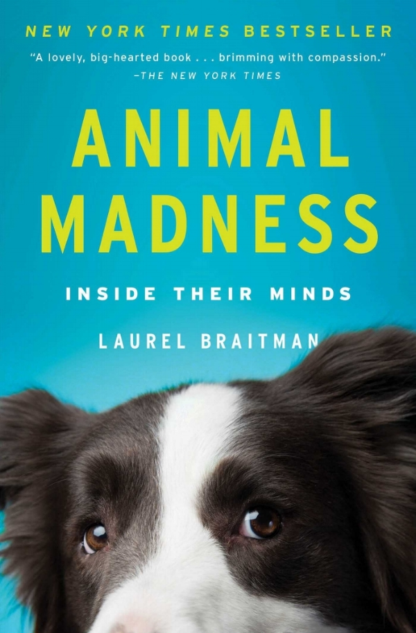 Book Cover: Animal Madness by Laurel Braitman