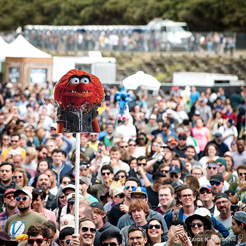 Monster in the crowd. Dr. Teeth and the Electric Mayhem perform at outside lands, Golden Gate Park, San Francisco, California (© Paige Parsons).