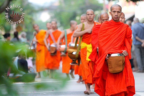 Early Morning Alms Giving to the Monks in Luang Prabang, northern Laos (©Irina Medvedev).