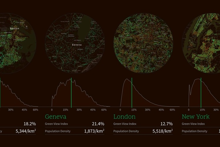 Treepedia compares canopy coverage in world cities. Image: MIT Senseable City Lab.