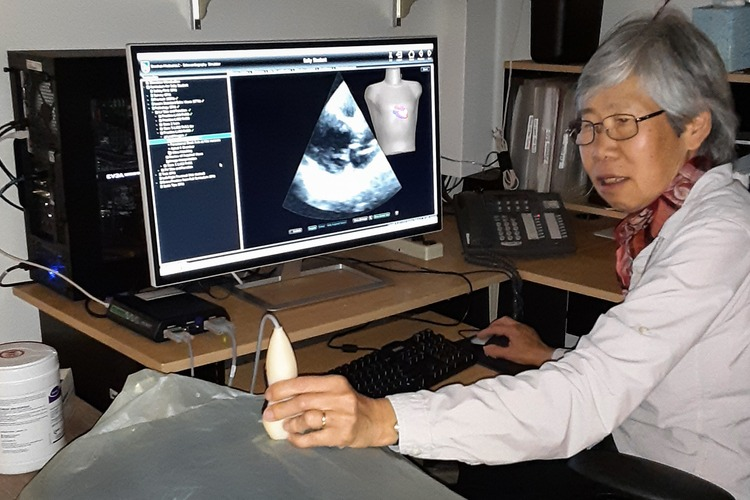 Francis Sheehan demonstrates use of her ultrasound simulator.