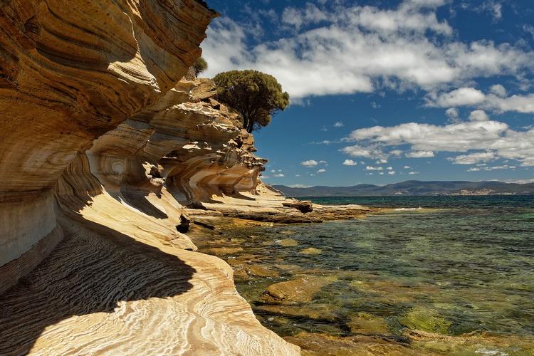 Best Base Locations Ark The Island 2020 Discover Tasmania: Best of Tasmania By Land and Sea | alum.mit.edu