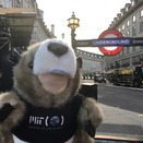 MIT Tim the Beaver in London